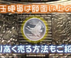 5,000円玉硬貨は額面以上の価値あり!より高く売る方法もご紹介